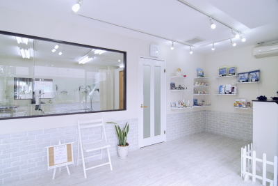 Dog-Salon Groom �g���~���O�T���� �����s�a�J��