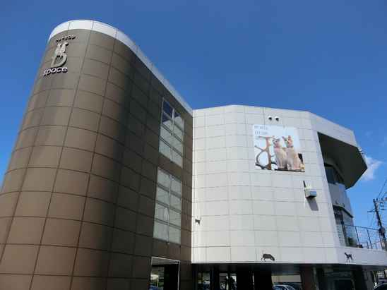福岡市南区でトリミング!人気のペットサロン5 …